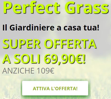 Perfect Grass prezzo